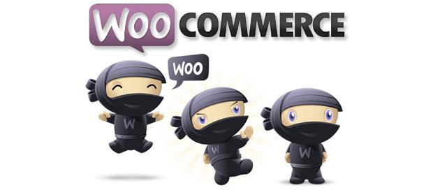 Corso Woocommerce Online