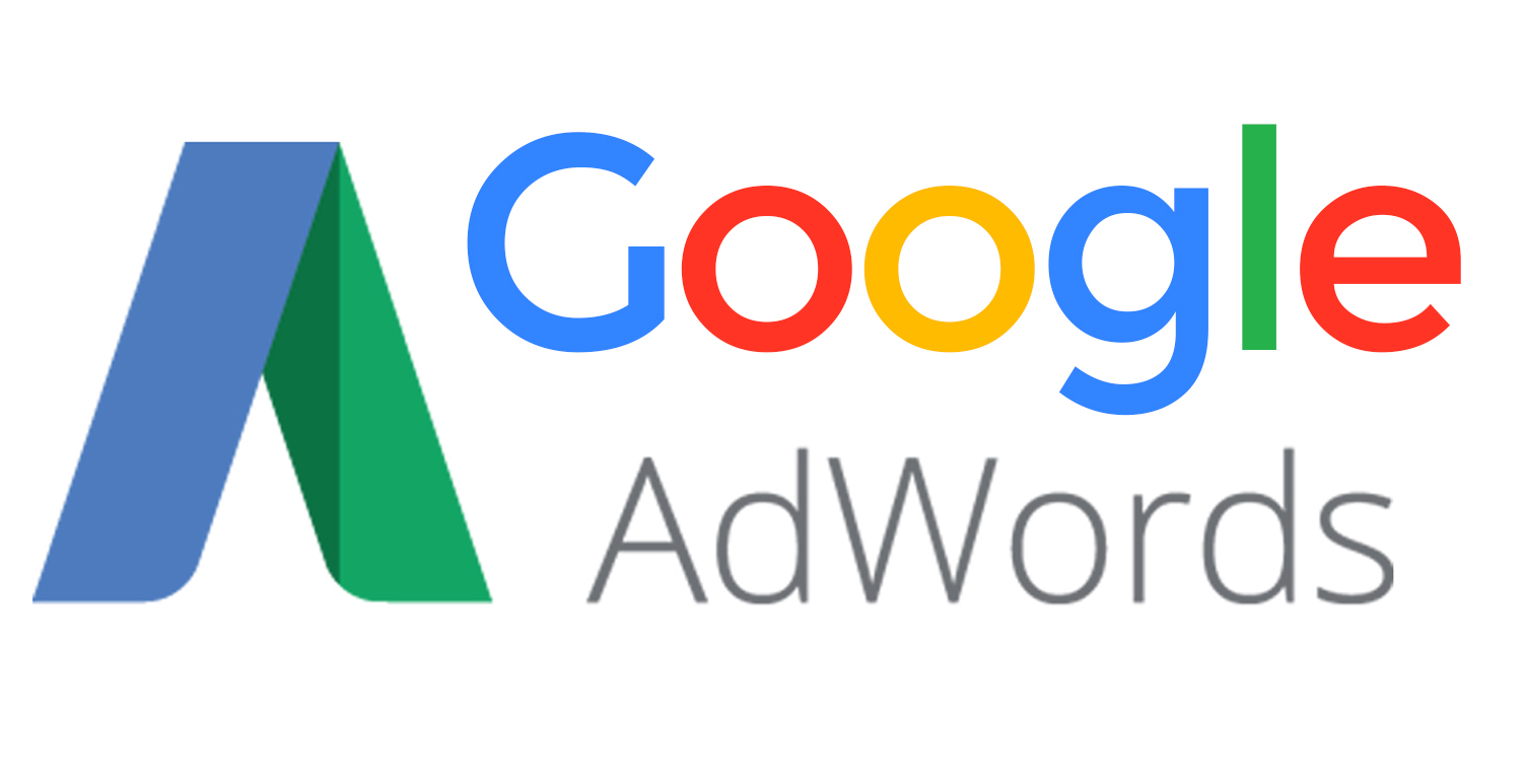 Consulente Google AdWords - Venaria Reale